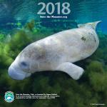 2018 Save The Manatee Club Calendar Preorder